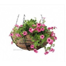 COCO FIBER HANGING PLANTER POT 10""
